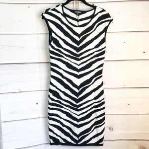 Express Zebra Print Knit Dress
